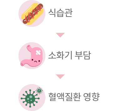 식습관-소화기부담-혈액질환영향