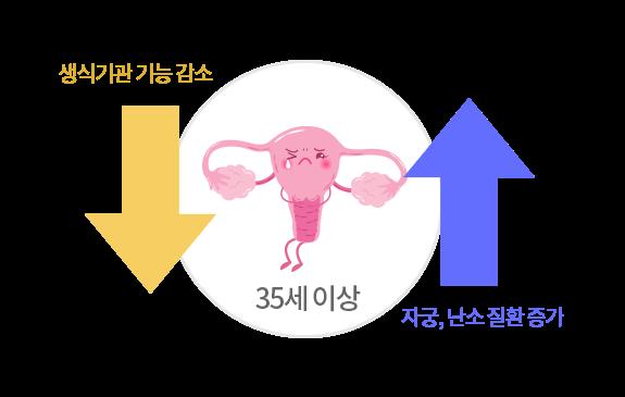 자궁/난소 질환의 발생 가능성 증가